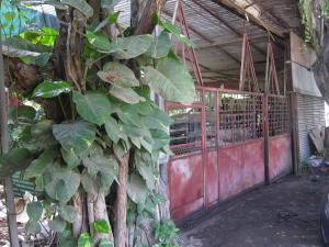 Casa En Venta En Ocumare Del Tuy, Ocumare, Venezuela, VE RAH: 16-13829