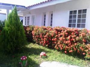 Casa En Venta En Tacarigua, Tacarigua, Venezuela, VE RAH: 16-11215