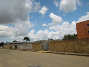Terreno En Venta En El Tigre, Pueblo Nuevo Sur, Venezuela, VE RAH: 16-14075