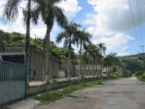 Galpon - Deposito En Venta En Municipio Cristobal Rojas, El Bucare, Venezuela, VE RAH: 16-14146