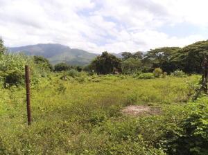 Terreno En Venta En Municipio San Diego, La Cumaca, Venezuela, VE RAH: 16-14477