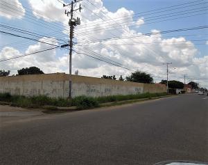 Terreno En Venta En El Tigre, Pueblo Nuevo Sur, Venezuela, VE RAH: 16-14814