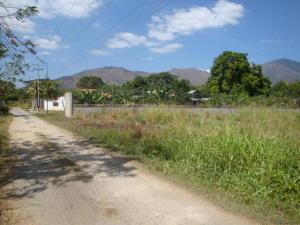 Terreno En Venta En Municipio San Diego, El Polvero, Venezuela, VE RAH: 16-14888