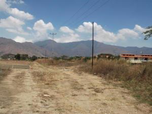 Terreno En Venta En Municipio San Diego, Pueblo De San Diego, Venezuela, VE RAH: 16-15043