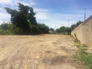 Terreno En Venta En Higuerote, Higuerote, Venezuela, VE RAH: 16-13532