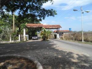 Terreno En Venta En Municipio Libertador, Santa Isabel, Venezuela, VE RAH: 16-15155