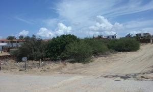 Terreno En Venta En Municipio Diaz San Juan, El Yaque, Venezuela, VE RAH: 16-15324