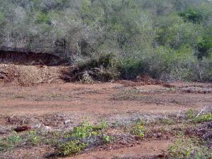 Terreno En Venta En Margarita, Los Robles, Venezuela, VE RAH: 16-15529