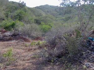 Terreno En Venta En Margarita, Los Robles, Venezuela, VE RAH: 16-15530