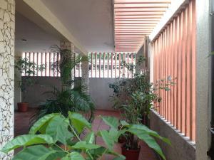 Local Comercial En Venta En Maracaibo, Avenida Falcon, Venezuela, VE RAH: 16-15302