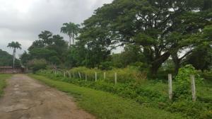 Terreno En Ventaen Valencia, Parque Valencia, Venezuela, VE RAH: 16-15791