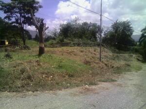 Terreno En Venta En Municipio Naguanagua, Carialinda, Venezuela, VE RAH: 16-15860