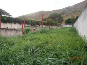 Terreno En Ventaen Maracay, El Castaño, Venezuela, VE RAH: 16-15954