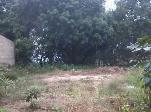Terreno En Venta En Maracay, Lomas De Palmarito, Venezuela, VE RAH: 16-15972