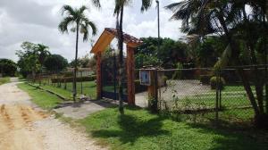 Casa En Venta En Tacarigua, Tacarigua, Venezuela, VE RAH: 16-16024