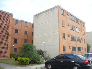Apartamento En Venta En Municipio San Diego, El Tulipan, Venezuela, VE RAH: 16-16099