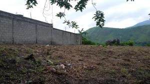 Terreno En Venta En Municipio Naguanagua, Carialinda, Venezuela, VE RAH: 16-16290