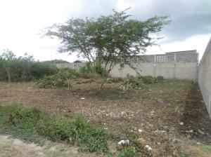 Terreno En Venta En Cabudare, Parroquia José Gregorio, Venezuela, VE RAH: 16-16490