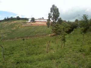 Terreno En Venta En Cubiro, Jimenez, Venezuela, VE RAH: 16-16758