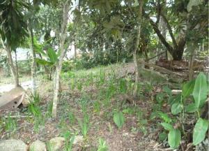 Terreno En Venta En Carrizal, Colinas De Carrizal, Venezuela, VE RAH: 16-17245