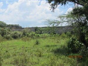 Terreno En Venta En Guacara, Zona Industrial El Tigre, Venezuela, VE RAH: 16-18121