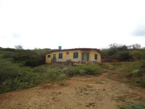 Terreno En Venta En Cubiro, Jimenez, Venezuela, VE RAH: 16-18126