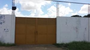 Local Comercial En Alquiler En Punto Fijo, Creolandia, Venezuela, VE RAH: 16-18165