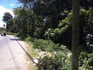 Terreno En Venta En Parroquia Carayaca, Almendron, Venezuela, VE RAH: 16-18315