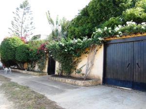 Casa En Venta En Municipio Antolin Del Campo Paraguachi, Playa El Agua, Venezuela, VE RAH: 16-18374