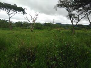 Terreno En Venta En Nirgua, Sector El Kiosko, Venezuela, VE RAH: 16-18457
