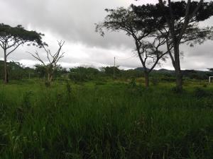 Terreno En Venta En Nirgua, Sector El Kiosko, Venezuela, VE RAH: 16-18460