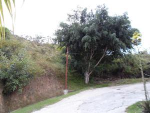 Terreno En Venta En Caracas, Oripoto, Venezuela, VE RAH: 16-18723