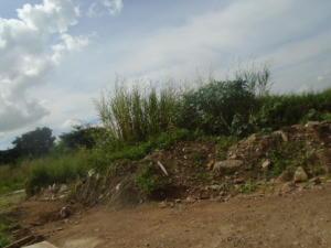 Terreno En Venta En Municipio Naguanagua, Maã±Ongo, Venezuela, VE RAH: 16-19075