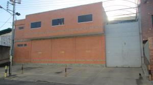 Galpon - Deposito En Venta En Municipio San Diego, Los Jarales, Venezuela, VE RAH: 16-19190