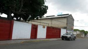 Galpon - Deposito En Alquiler En Santa Cruz De Aragua, Residencias Santa Cruz, Venezuela, VE RAH: 16-19467