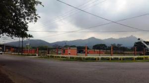 Terreno En Venta En Municipio San Diego, El Polvero, Venezuela, VE RAH: 16-19609