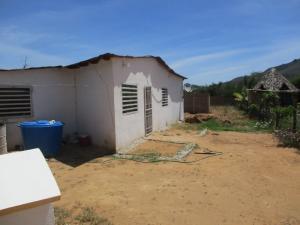 Casa En Venta En Municipio Antolin Del Campo Paraguachi, Paraguachi, Venezuela, VE RAH: 17-145