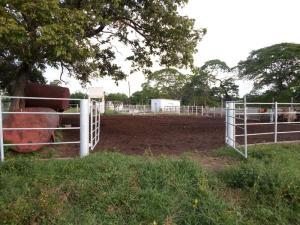 Terreno En Venta En Machiques, La Sabana, Venezuela, VE RAH: 17-284