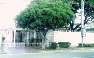 Casa En Venta En Municipio San Francisco, La Coromoto, Venezuela, VE RAH: 17-333