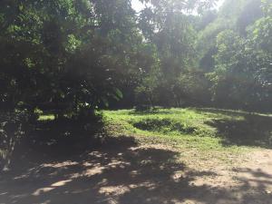 Terreno En Ventaen Municipio San Diego, La Cumaca, Venezuela, VE RAH: 17-353