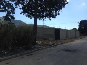 Terreno En Venta En Municipio Naguanagua, Maã±Ongo, Venezuela, VE RAH: 17-712