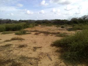 Terreno En Ventaen Punto Fijo, Guanadito, Venezuela, VE RAH: 17-800