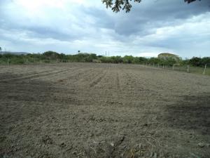Terreno En Venta En Cabudare, Parroquia José Gregorio, Venezuela, VE RAH: 17-829
