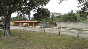 Terreno En Venta En Guacara, Vigirima, Venezuela, VE RAH: 17-1038