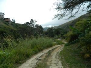 Terreno En Venta En Carrizal, Municipio Carrizal, Venezuela, VE RAH: 17-1432