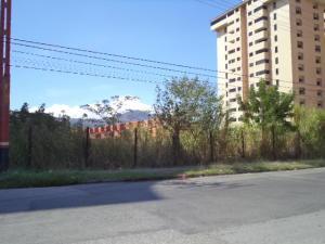 Terreno En Venta En Municipio Naguanagua, Maã±Ongo, Venezuela, VE RAH: 17-1756