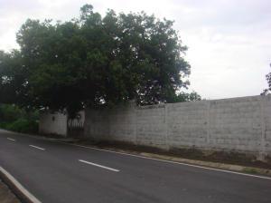 Casa En Venta En San Felipe, Guama, Venezuela, VE RAH: 17-2076