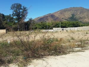 Terreno En Venta En Municipio San Diego, El Polvero, Venezuela, VE RAH: 17-2743