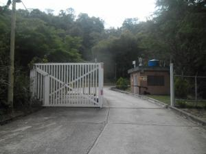 Apartamento En Venta En Caracas, Parque Caiza, Venezuela, VE RAH: 17-2921