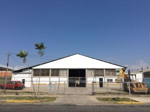 Galpon - Deposito En Venta En Barquisimeto, Parroquia Union, Venezuela, VE RAH: 17-3284